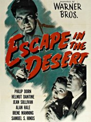 Escape in the Desert
